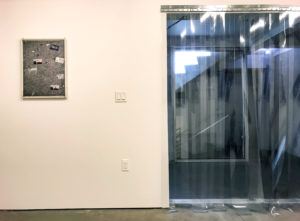 Not the Apple but the Fall, Installation View