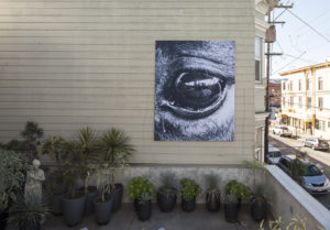 Feminist Land Art Retreat, Gina, 2018, Digital print on polyduck