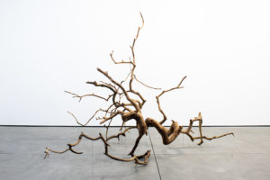 Stephen Lichty Branch, 2018 Weeping mulberry branch, paraloid b-72, silver, Courtesy of the artist and Foxy Production, New York
